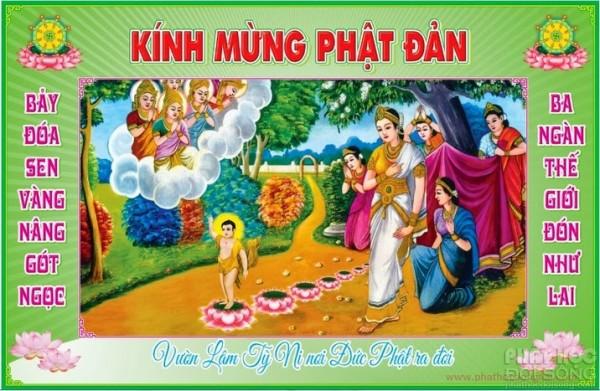 phat-dan-lam-ty-ni