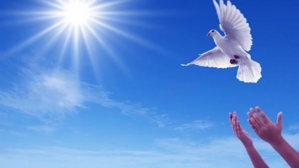 Tâm buông bỏ sẽ tĩnh lặng, người buông bỏ sẽ bình yên…
